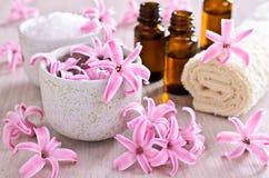 Jacinto rosado de las flores Spa Foto de archivo