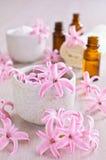 Jacinto rosado de las flores Spa Foto de archivo libre de regalías