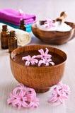 Jacinto rosado de las flores Spa Imagen de archivo