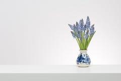 Jacintos de uva pequenos em um vaso azul das louças de Delft no cerco branco Fotos de Stock