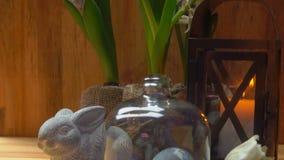 Jacintos en una tabla con un ajuste festivo de Pascua almacen de metraje de vídeo