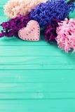 Jacintos frescos y corazón decorativo rosado en backgro de madera Imagen de archivo libre de regalías