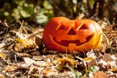Jack-cabeza de Halloween Imagen de archivo libre de regalías