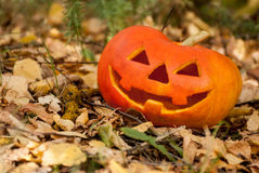Jack-cabeza de Halloween Foto de archivo