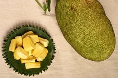 Jack fruit. Ripe in yellow Royalty Free Stock Photos