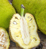 Jack-fruit. Stock Photography