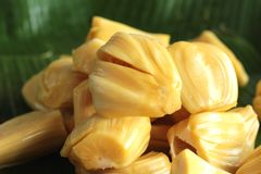Jack fruit on the market Royalty Free Stock Image