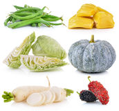 Jack fruit, pumpkin, Mulberry, cabbage, Green b. Daikon radishes, jack fruit, pumpkin, Mulberry, cabbage, Green beans on white background Royalty Free Stock Image