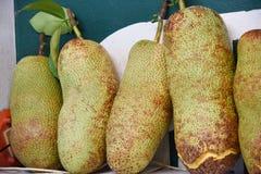 Jack fruit. Tropical jack fruit on market royalty free stock photos