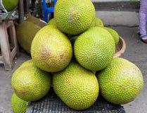 Jack fruit, tropisch die fruit bij Lange het fruitmarkt van Vinh wordt getoond, Mekong delta De meerderheid van de vruchten van V royalty-vrije stock afbeelding