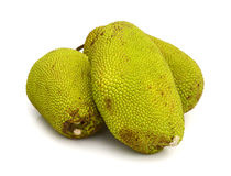 Jack fruit on white background Royalty Free Stock Photos