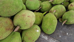 Jack fruits Stock Photo