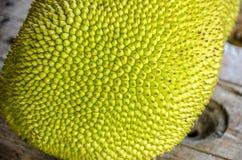 Jack-fruto Imagem de Stock Royalty Free
