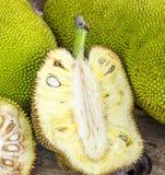 Jack-fruto Fotografia de Stock