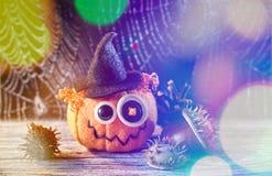 Jack Halloween i pajęczyna Obraz Stock