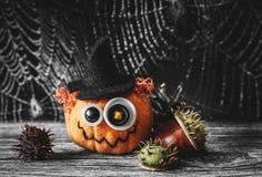 Jack Halloween i pajęczyna Obrazy Royalty Free