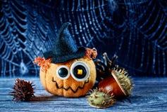 Jack Halloween i pajęczyna Zdjęcia Royalty Free