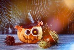 Jack Halloween i pajęczyna Fotografia Stock