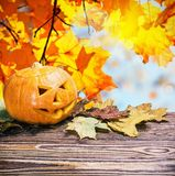 Jack lantaarn voor Halloween uit pompoenen wordt gemaakt die Royalty-vrije Stock Foto's