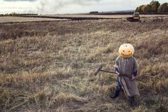 Jack-lantern with a pumpkin on his head standing in the field. Royalty Free Stock Images