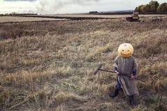 Jack-lanterne avec un potiron sur sa tête se tenant dans le domaine Images libres de droits