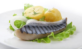 Jack mackerel with potato Stock Image