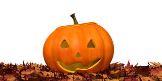Jack O'Lantern Royalty Free Stock Photo