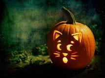 Jack-o-lantern Royalty Free Stock Images