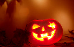 Jack O' Lantern. And autumn leaves on a blurred background. Pumpkin carved for Halloween Royalty Free Stock Photos