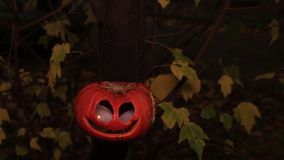 Jack-o-lantern on a branch with yellow leaves. Jack-o-lantern hanging on a branch with shaking yellow leaves around stock video