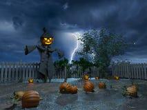 Jack o lantern Stock Images