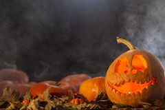 Jack-o-lantern on a dark background Royalty Free Stock Image