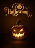 Jack-o-Lantern Dark Scary Cool Royalty Free Stock Photos