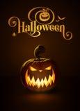 Jack-o-Lantern Dark Scary Stock Images