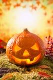 Jack O'Lantern do outono da natureza em uma vida ainda Foto de Stock Royalty Free