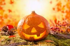 Jack O'Lantern do outono da natureza em uma vida ainda Fotos de Stock Royalty Free