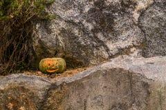 Jack-O-Lantern sitting on large boulder. Jack-O-Lantern with flame visible inside sitting on large boulder next to pine tree Stock Photos