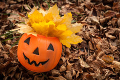Jack o lantern on the forest floor Royalty Free Stock Images