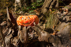 Jack o'Lantern in a forest Royalty Free Stock Photos