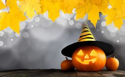 Halloween pumpkin with witches hat stock photography