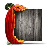 Jack O Lantern Halloween Sign. Jack O Lantern Halloween blank sign as a side view pumpkin character biting into an old wood banner as an advertising and seasonal Royalty Free Stock Images