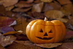 Jack-o-Lantern with Leaves Stock Images
