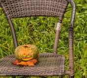 Jack-O-Lantern on chair in park royalty free stock images