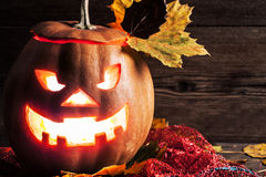 Jack-o-lantern Stock Photography