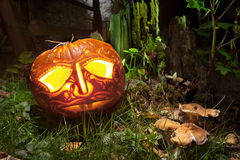 Jack o'Lantern in a magic forest Stock Images