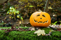 Jack-O-Lantern On a Mossy Log Royalty Free Stock Photos