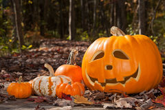 Jack-O'-Lantern on Path Royalty Free Stock Images