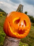 Jack-o-lantern pumpkin. Placed on tree trunk in the backyard Stock Photography