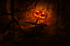 Jack O Lantern pumpkin on wood cross over dead tree, moon and cl. Oudy sky, Halloween concept royalty free stock photography
