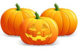 Jack-o-lantern and Pumpkins Royalty Free Stock Images